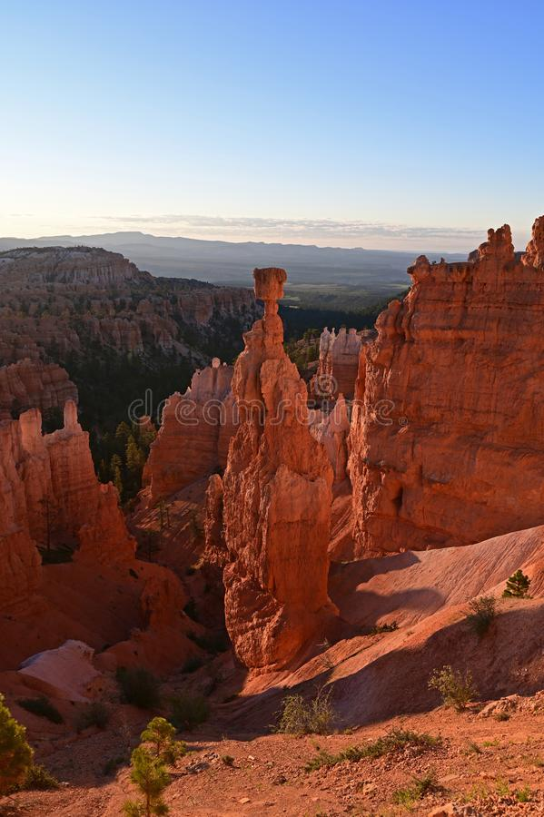 Thor`s Hammer in Bryce Canyon National Park at sunrise. royalty free stock photography