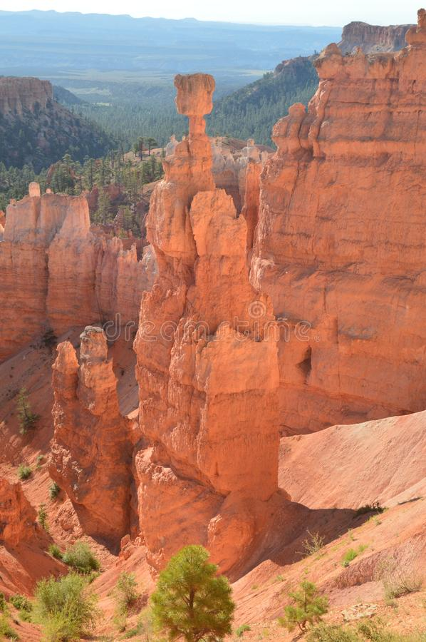 Thor`s Hammers In Bryce Canyon Formations Of Hoodos Geology Travel Nature. June 25, 2017. Bryce Canyon Utah. Arizona. EEUU. USA stock photography