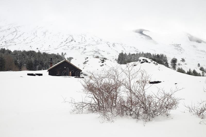 Thorn bushes in snow capped Galvarina Plateau, on backgrounf blurred refuge. Of Etna Park, Sicily stock photography