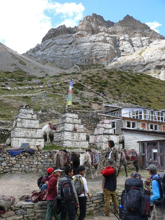 Thorong Phedi - wioska pod Thorong losu angeles przepustką, Nepal zdjęcia royalty free