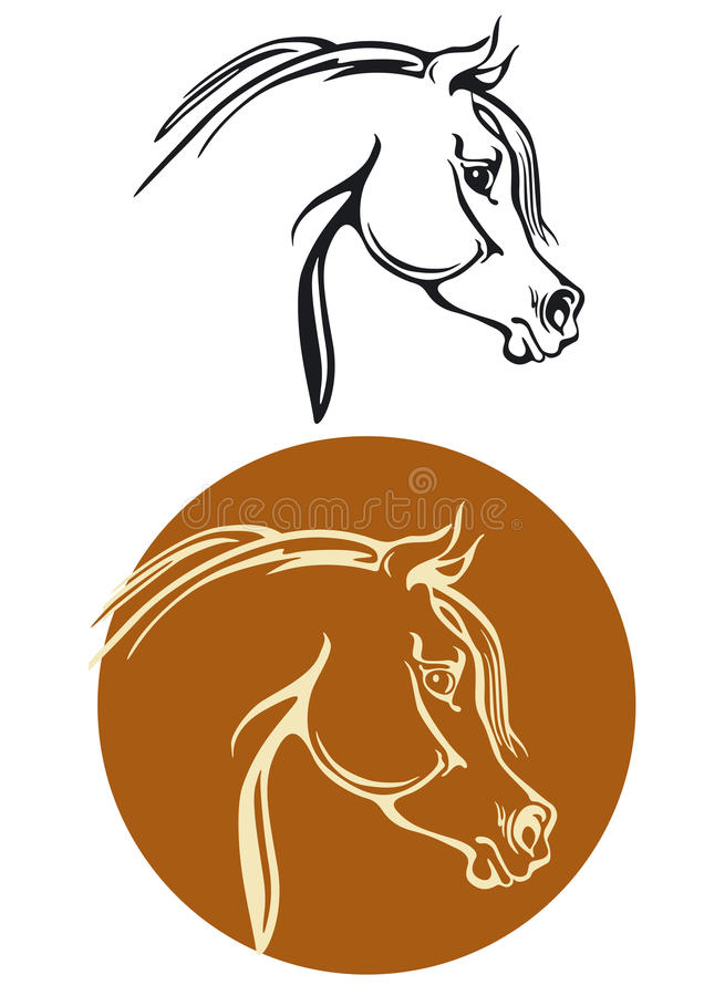 Download Thoroughbred horse head stock vector. Image of character - 23785578