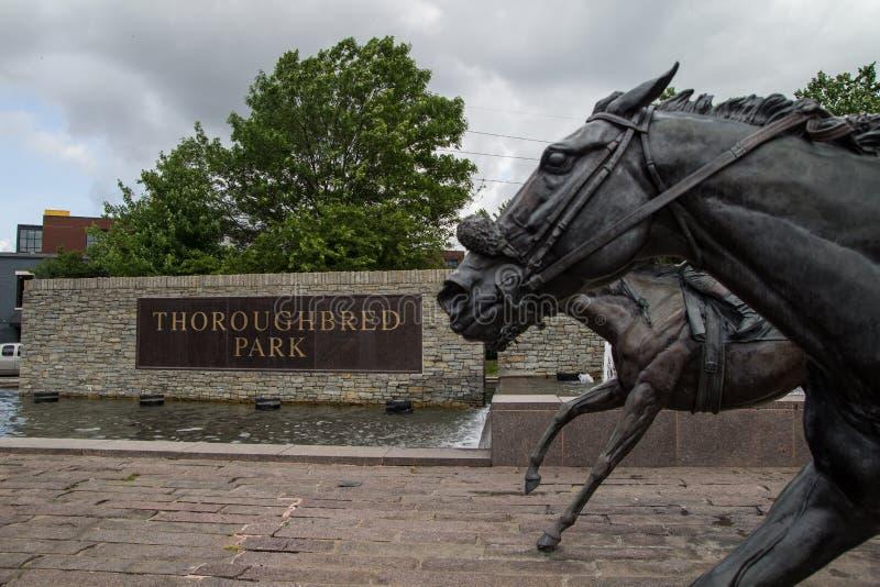 Thoroughbred park zdjęcie royalty free