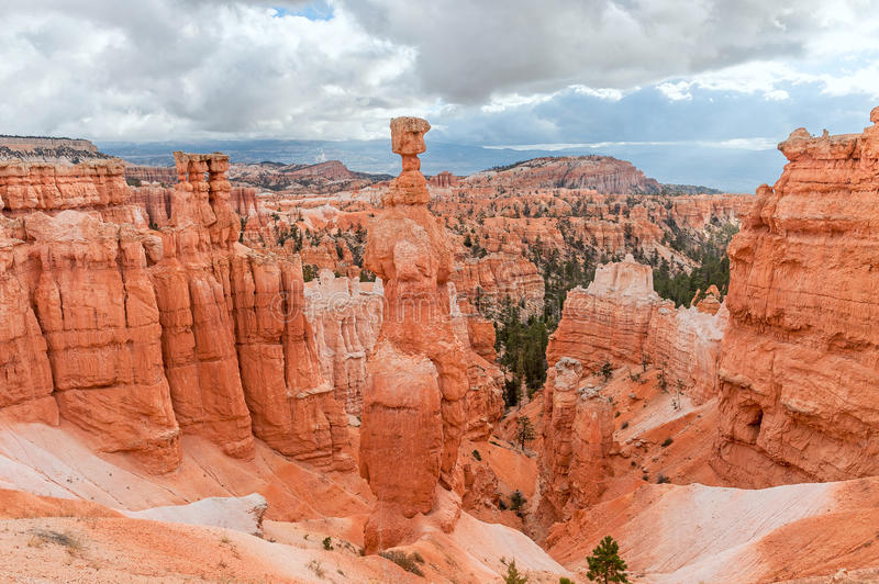 Thors hammare i Bryce Canyon National Park i Utah, USA arkivbild