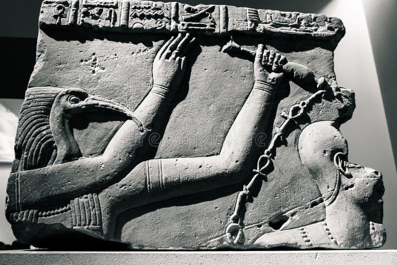 Thoth stock image