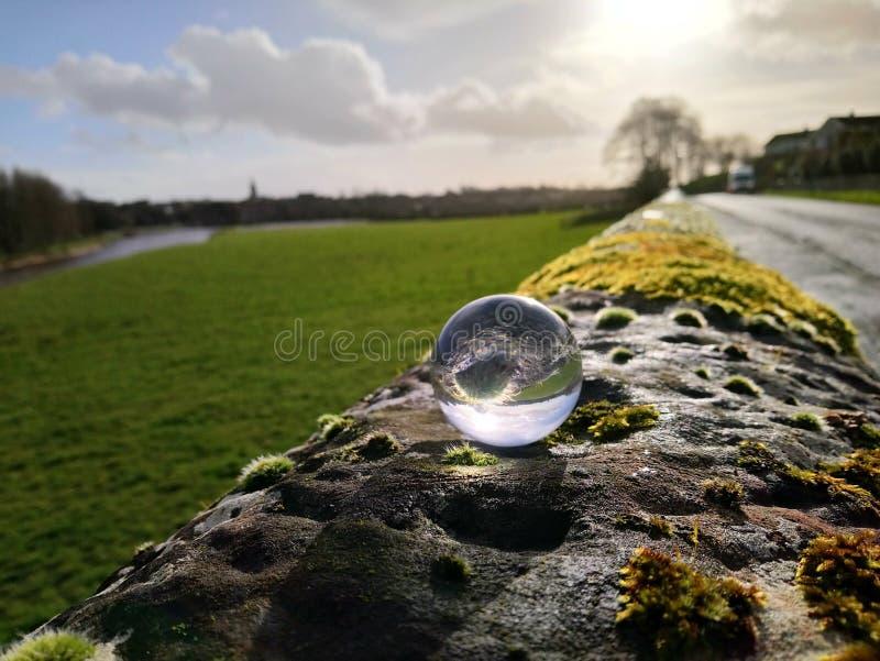 crystallised moss stock photo
