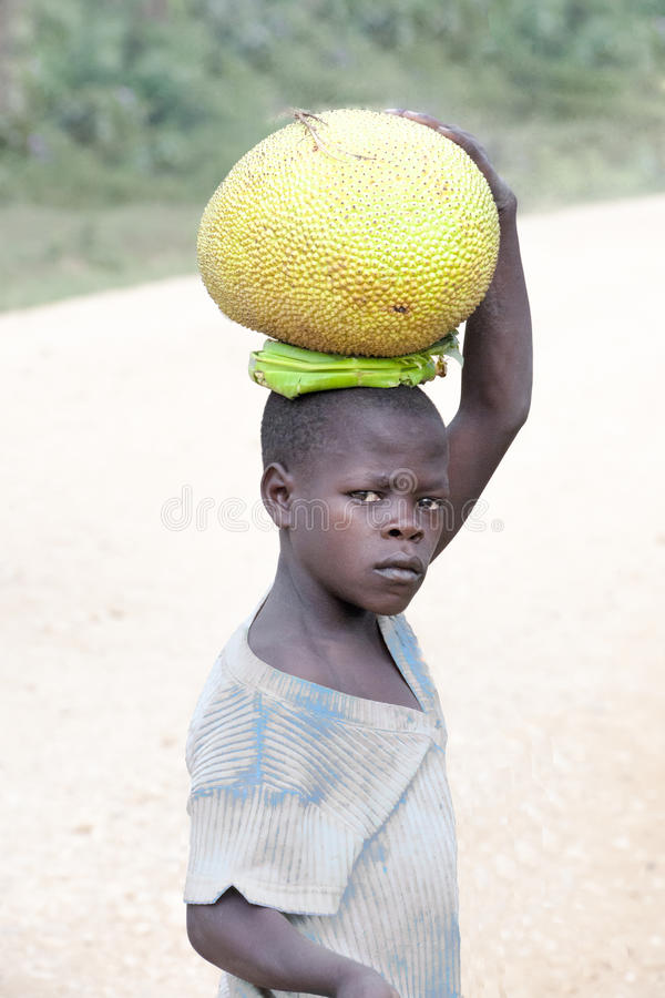 Thoughtful boy carries jackfruit home royalty free stock image