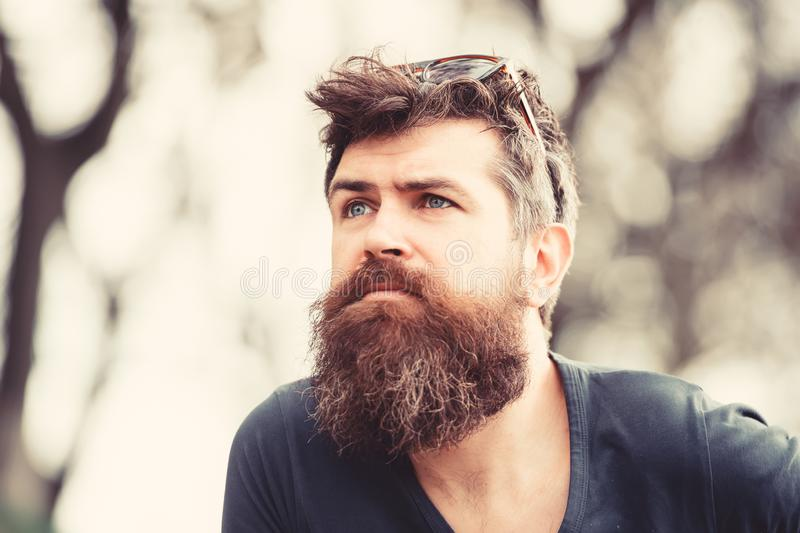 Thoughtful man with blue eyes looking into the sky, tranquility and mindfulness concept. Young bearded hipster with. Sunglasses on his head strolling in the stock photos
