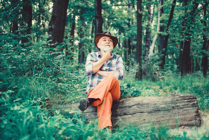 Thoughtful man. hiking in deep wood. forest owner. summer or spring picnic. senior man farmer relax in forest. mature royalty free stock photos