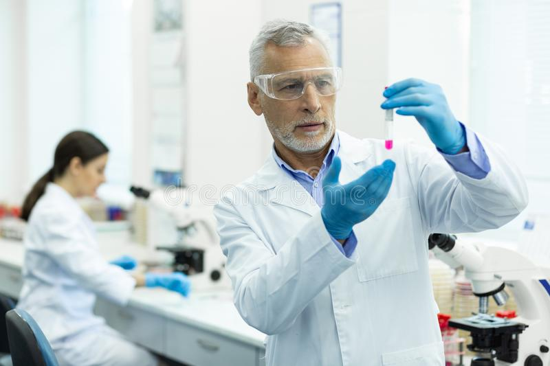 Serious mature researcher working in modern laboratory. Thoughtful researcher. Attentive bearded scientist wrinkling his forehead while looking at pink liquid stock photography