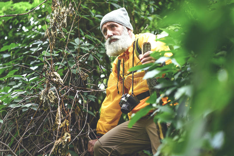 Thoughtful senior male hiker walking in wild nature stock images