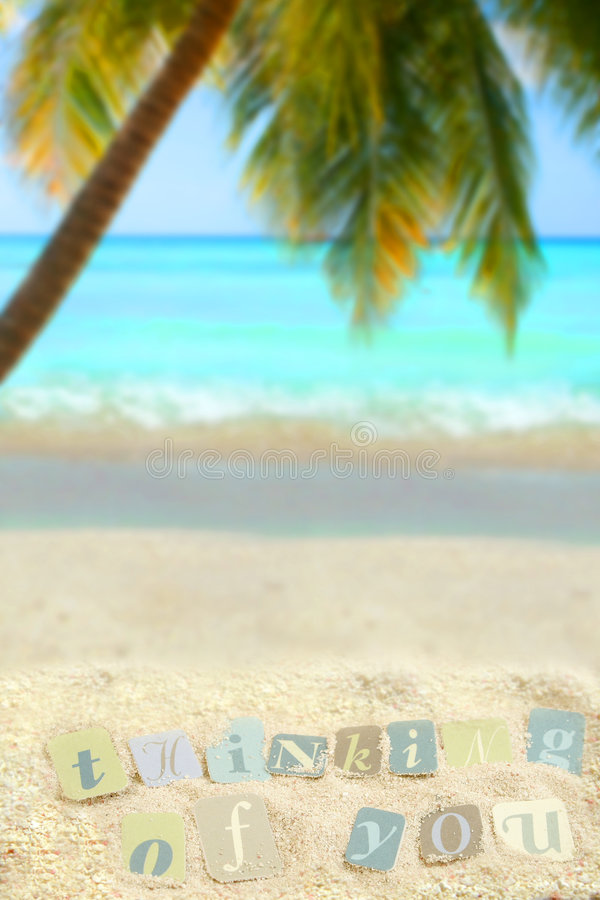 Download Thoughtful tropics stock image. Image of tree, seashore - 5549435