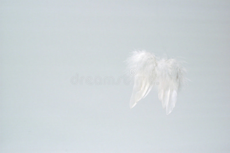 Thoughts of an angel royalty free stock photo
