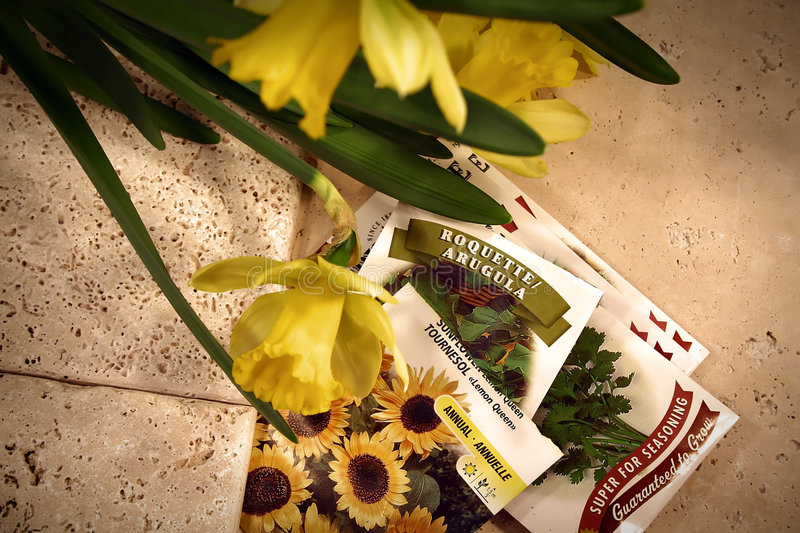 Thoughts of spring. Tools, seeds and pots for planting royalty free stock photos