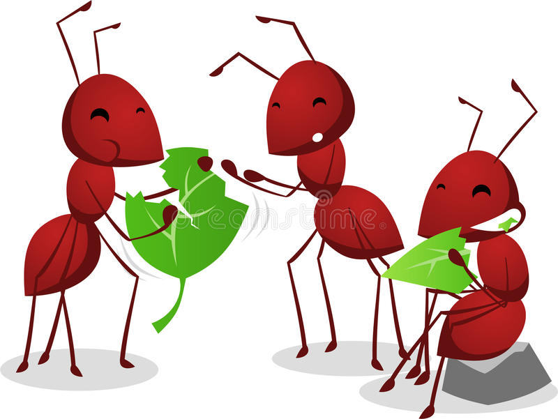 Three Ants eating green leafs. Group of three cartoon ants eating green leafs together, three brown ants illustration stock illustration