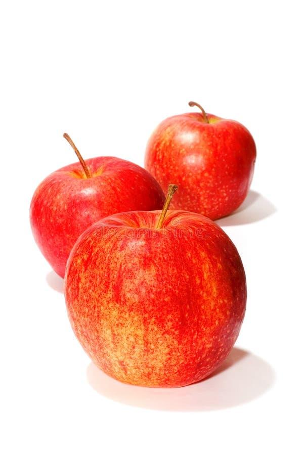 Three apple royalty free stock image