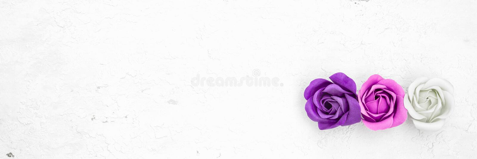 Three artificial roses on white grunge wooden background, web banner royalty free stock photo