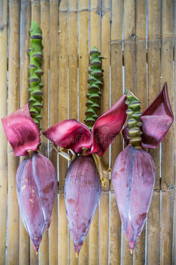 Three banana blossoms cut from banana trees. stock images