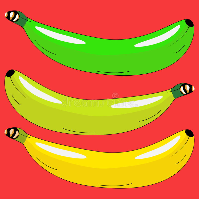 Three bananas in different colors stock photo