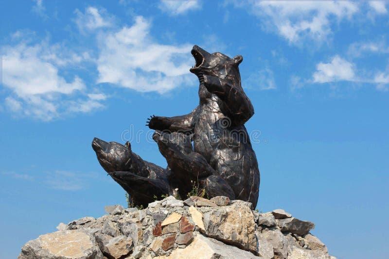 Three bear stock photos