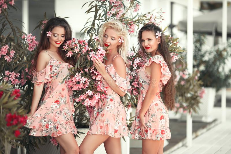 Three beautiful bridesmaid women in a pretty dress with flowers posing over pink blooming flowers background. Fashion photo. stock photo