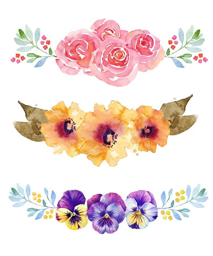 Three beautiful flower compositions. Three beautiful flower watercolor background compositions royalty free illustration
