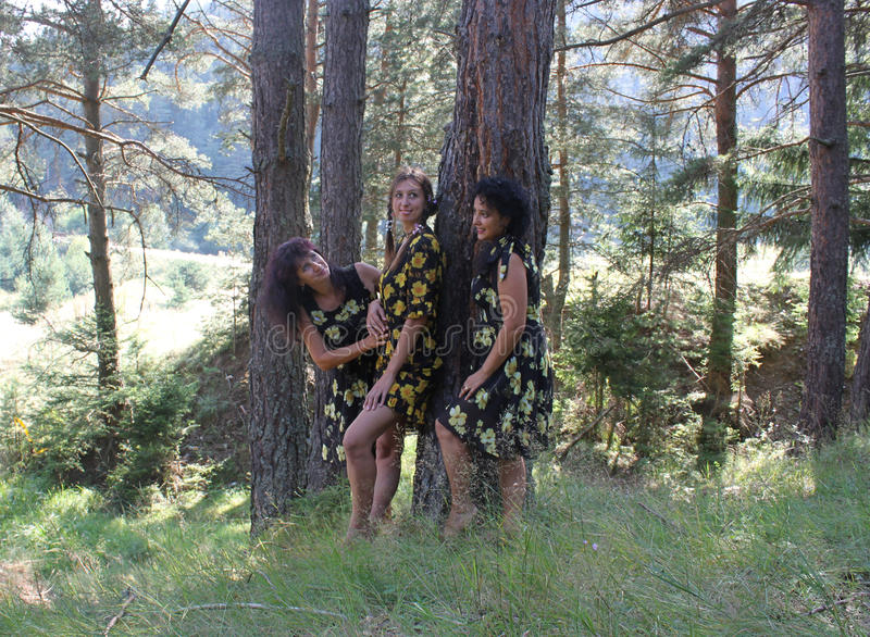Three beautiful women in a forest stock image