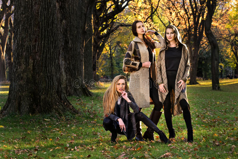 Three beautiful young models in autumn elegant clothes posing at Central Park. Three beautiful young models in autumn elegant clothes posing at Central Park stock photography