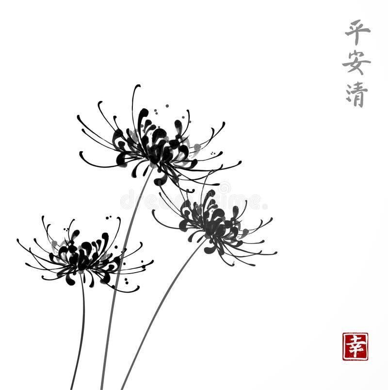 Three black chrysanthemum flowers on white background. Traditional oriental ink painting sumi-e, u-sin, go-hua royalty free illustration