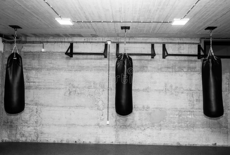 Three black punching bags in the empty boxing gym with naked grunge wall in background black and white stock image