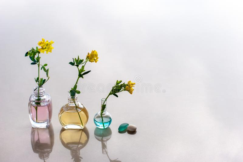 Three bottles of aromatic oils are in line with different color oils. royalty free stock photo
