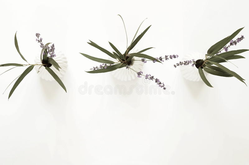 Three bouquets of lavender and eucalyptus branches in white vases royalty free stock photo