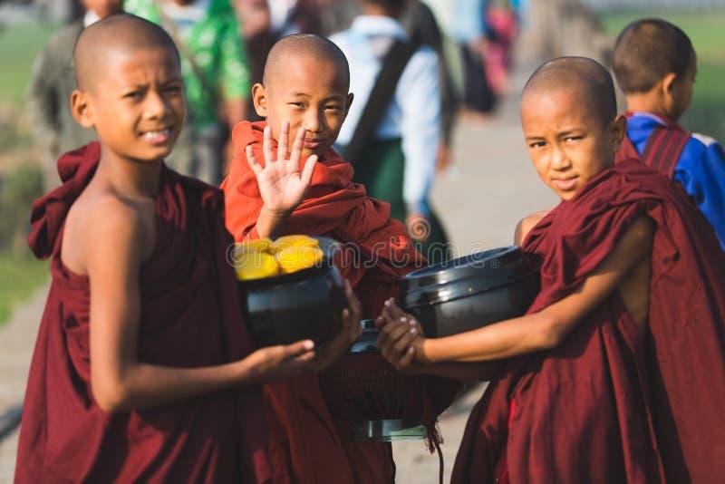 Three Boys Buddhist monks royalty free stock image
