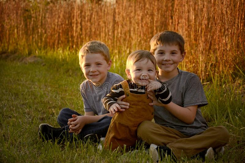 Three boys in a field stock photography