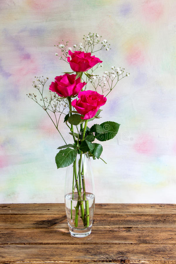 Three bright pink roses. With gypsophila in a crystal vase against a pastel background stock images