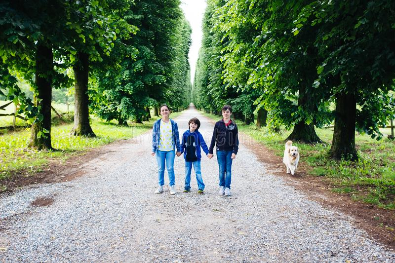 Three brothers portrait in a tree lined avenue stock images