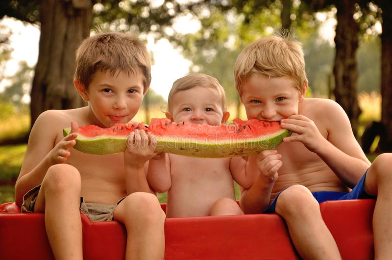 Three boys sharing watermelon royalty free stock photo