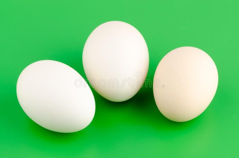 Three brown eggs royalty free stock image