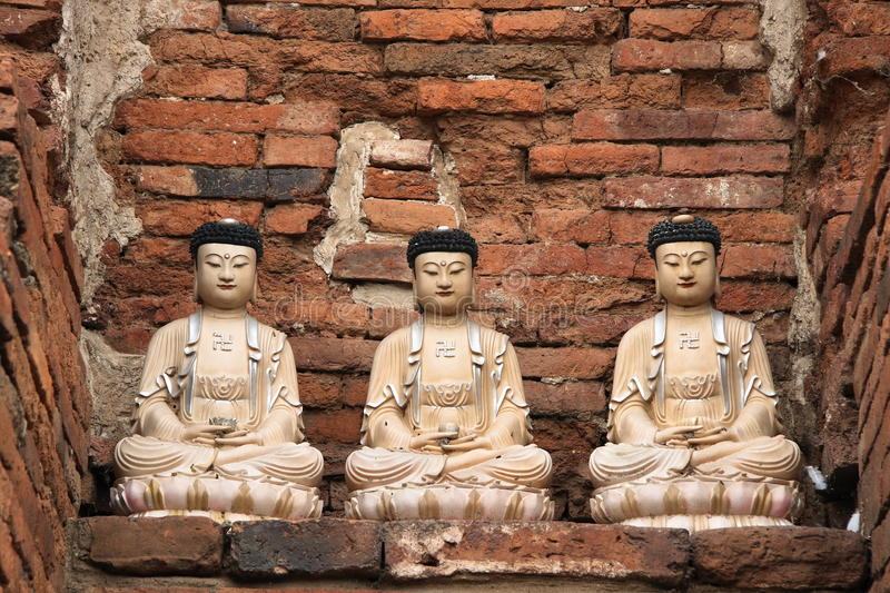 Three buddhas stock images