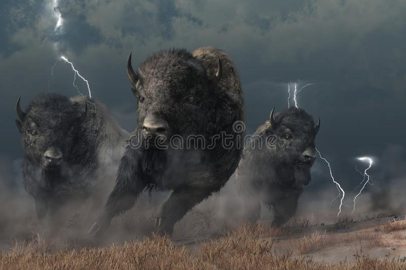 Buffalo in a Storm. Three buffalo stampede accross the North American prairie. Driven by the flasing lightning and booming thunder of a storm, these bison raise royalty free illustration