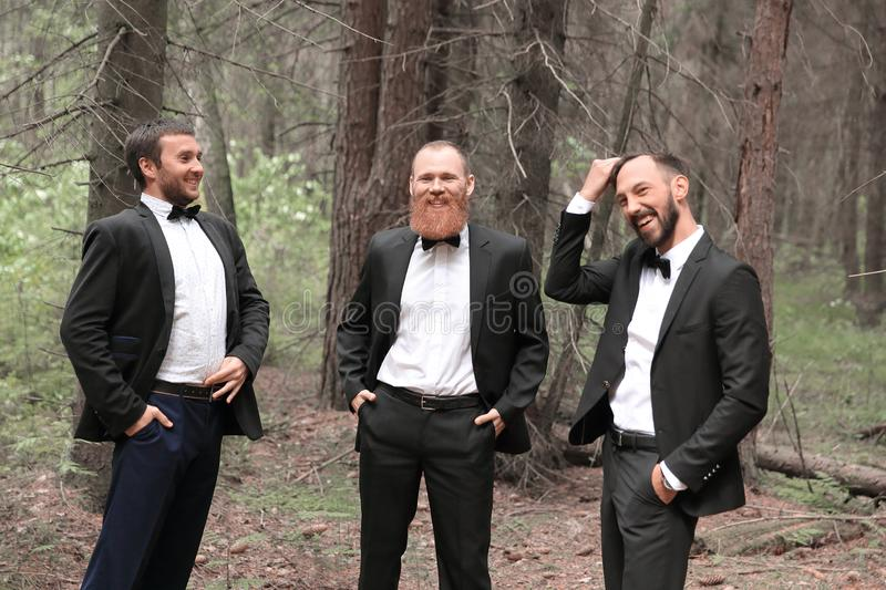 Three business partners talking in the woods.Eco-friendly business.  royalty free stock image