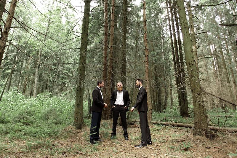 Three business partners in the woods.Eco friendly and sustainable business.  stock photo