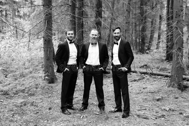 Three business partners in the woods.Eco friendly and sustainabl . black and white photo. Three business partners in the woods.Eco friendly and sustainable stock images