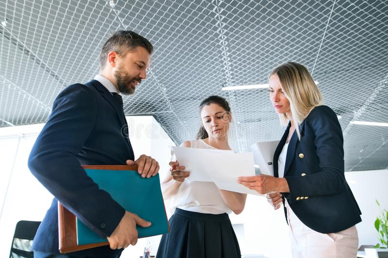 Three business people in the office talking together. stock images