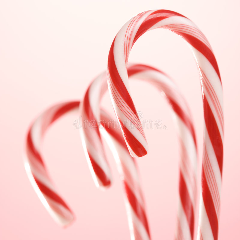 Three candy canes. Still life of three candy canes stock photography