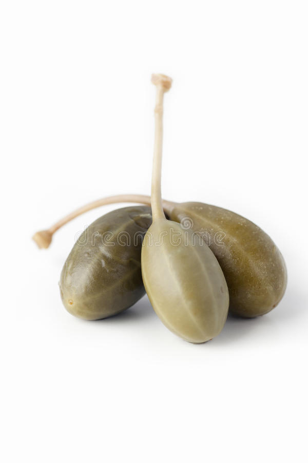 Free Three Capers Royalty Free Stock Photo - 15734475