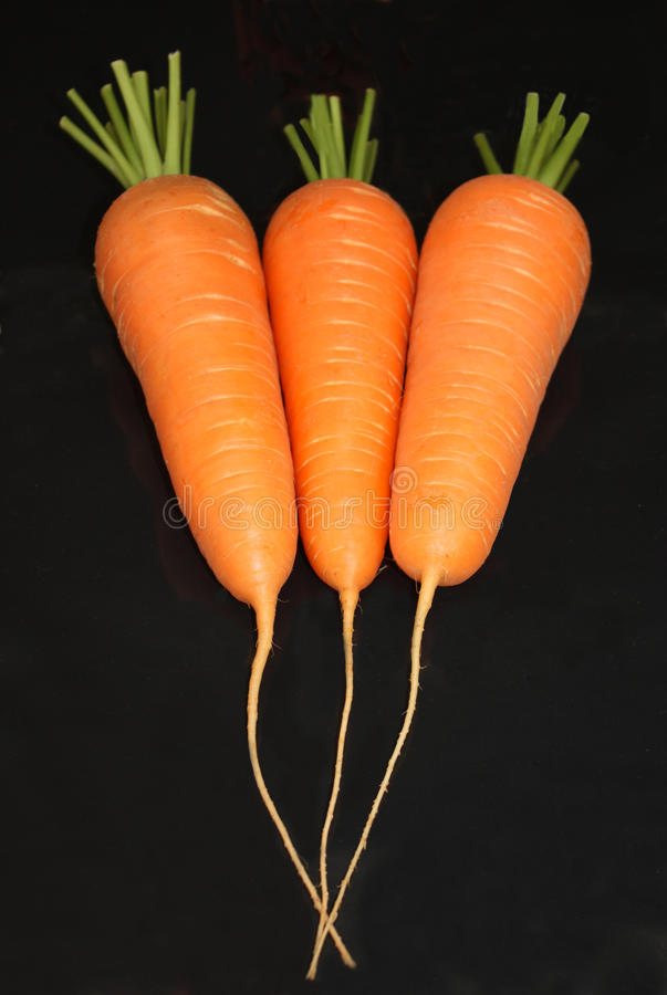 Free Three Carrots Stock Photography - 12076112