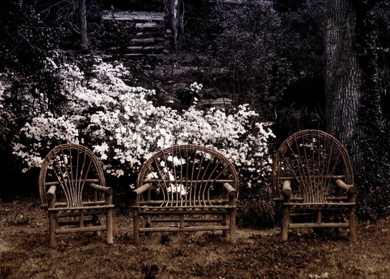 Three Chairs Royalty Free Stock Photo