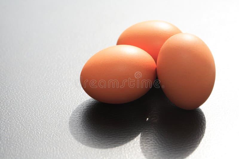 Three Chicken Eggs. On black background against morning sun light royalty free stock photo
