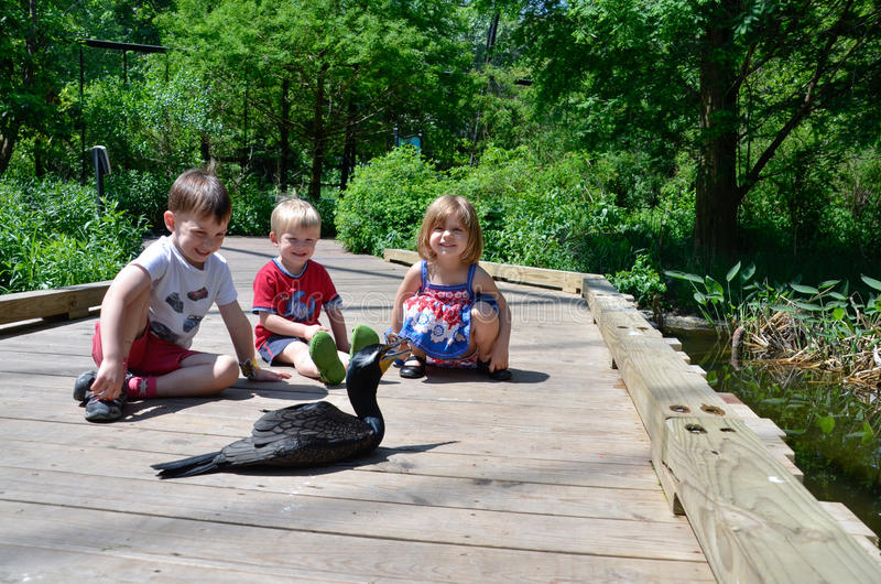 Three children and a bird royalty free stock photos
