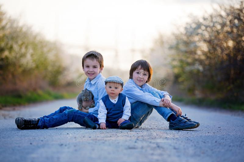 Three children, boy brothers in park, playing with little bunnies. On sunset, rural scene royalty free stock images